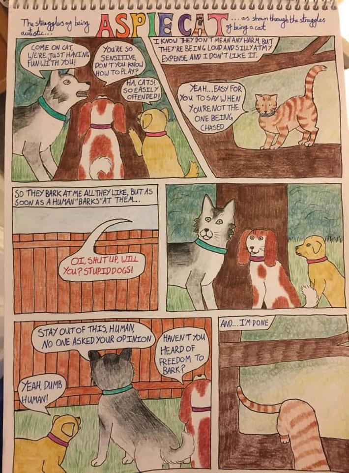 'Aspie Cat' cartoon